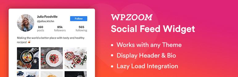 WordPress plugin WPZOOM