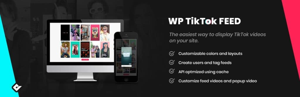 WordPress TikTok plugin